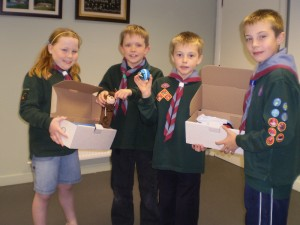 Cub Shoe Box Collectors