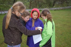 Cubs (Tuesday) - Orienteering_2015_1