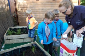Beavers_Purple_Gardener_Activity_Badge_7