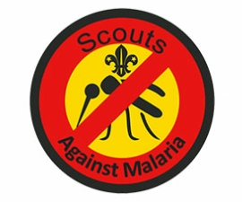 Grey_Pack_Scouts_Against_Malaria_13