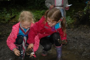Beavers Outdoor Activity Day_2016_2