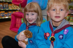 Beavers_Pets_at_Home_2016_6