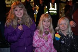 Group Bonfire & Fireworks Display