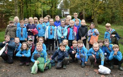 Rossendale District Beavers Outdoor Activity Day 2017