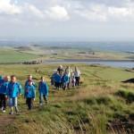 Beavers Visit Scout Moor Wind Farm