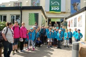 District Beavers Blackpool Zoo Trip