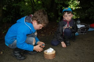 Beavers Outdoor Activity Day_2016_3